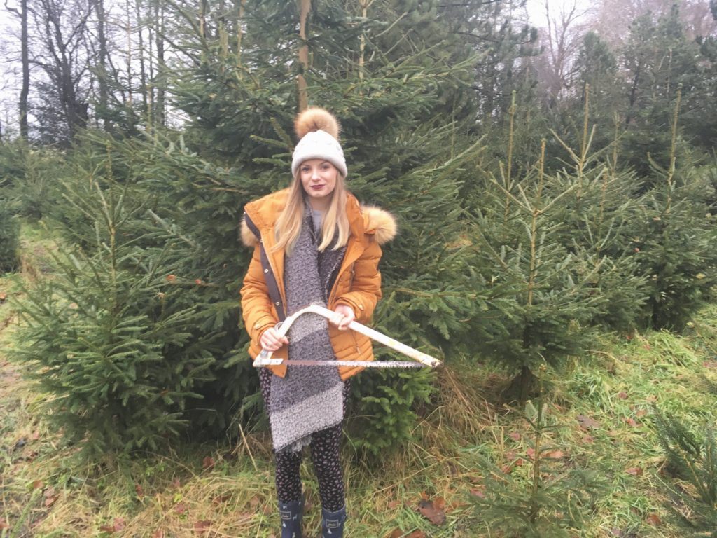 Christmas_Tree_Cutting