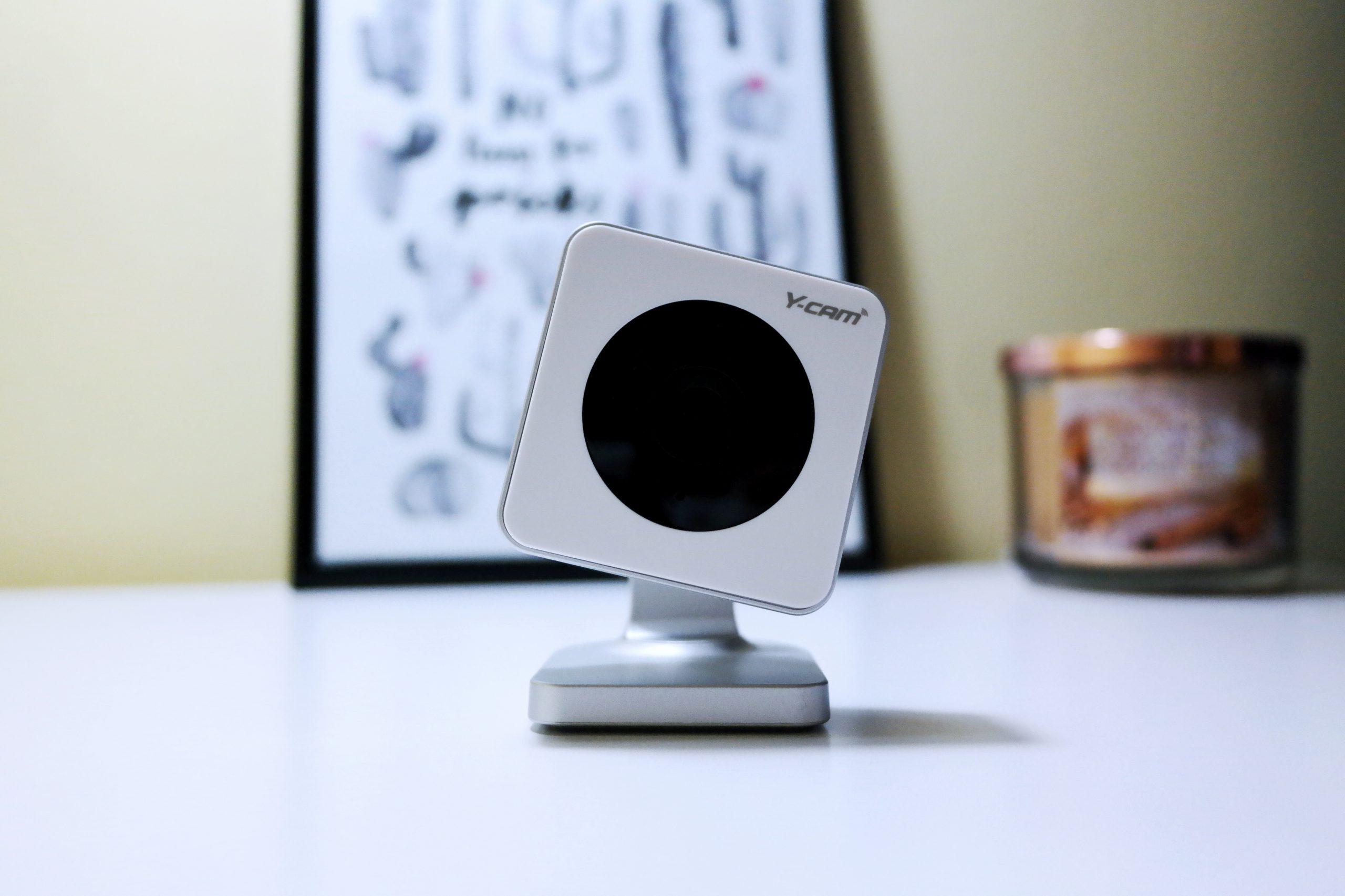 Y Cam Evo Home Security Camera Review Dog Cam