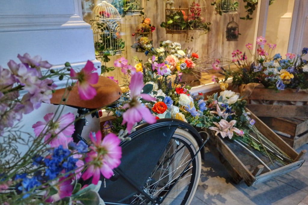 florist liverpool wild plants bicycle bar interior