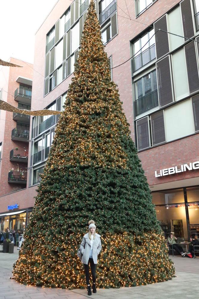 Hafencity-Hamburg-Tree