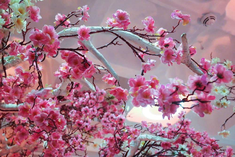 Go Glam Gala Blossom Trees