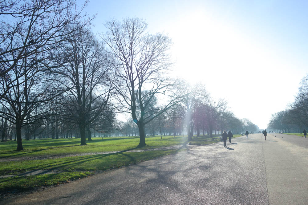 Hyde Park London Winter