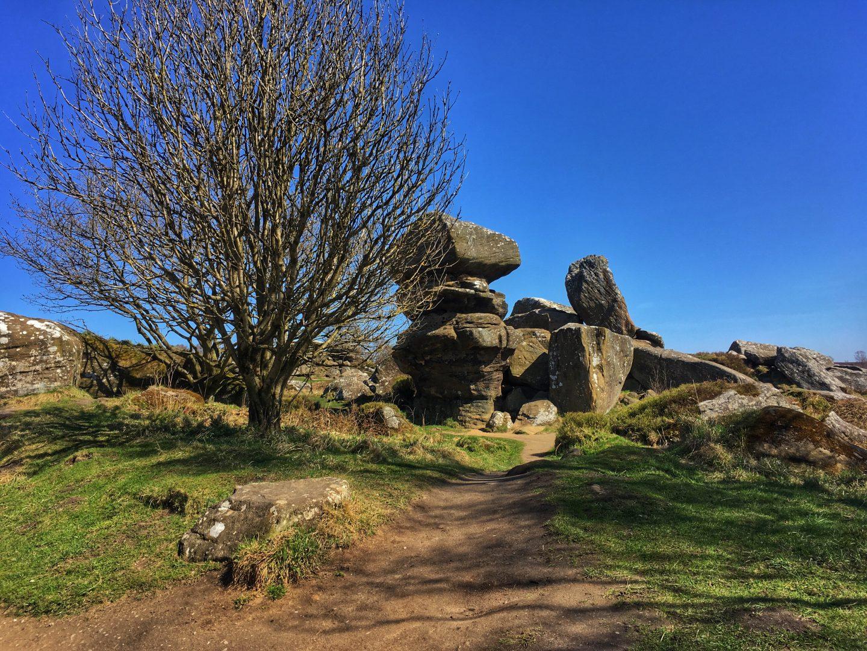 Brimham Rocks Yorkshire Dales