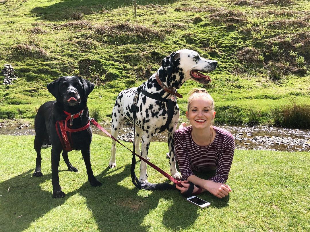dog-friendly-hike-lake-district