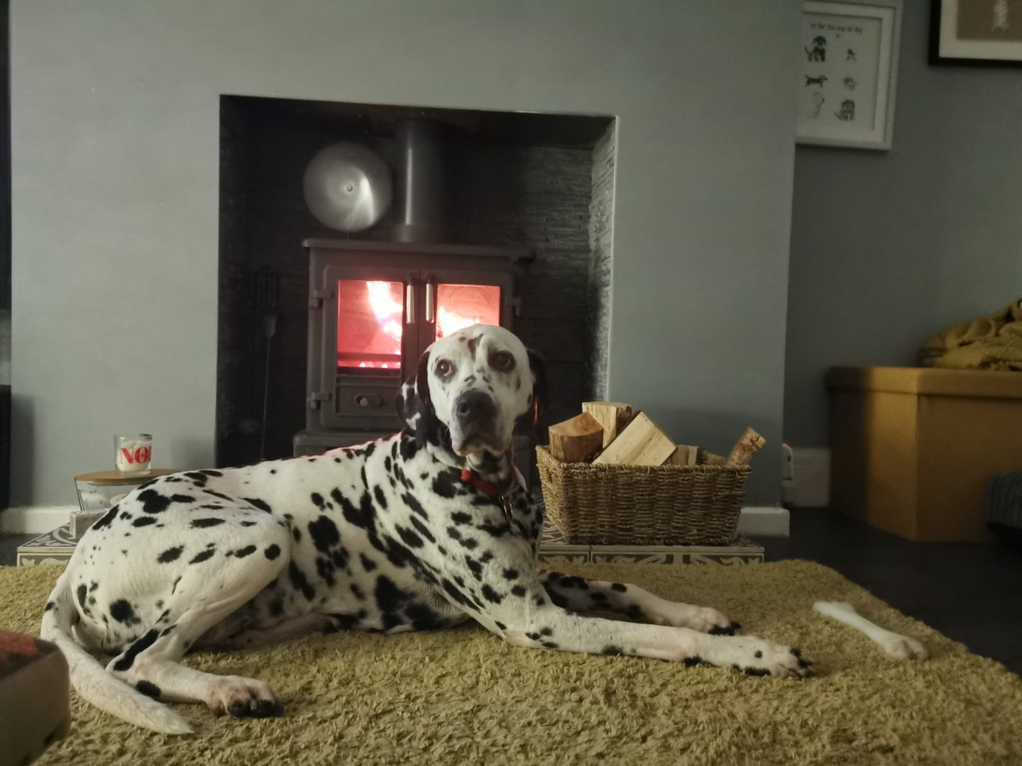 Caring for wood burning stove